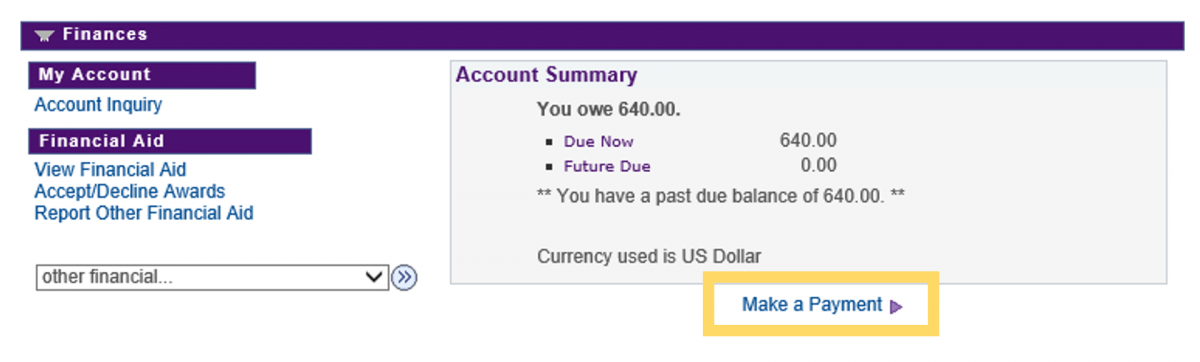 Make a payment link